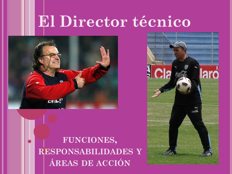 funciones, responsabilidades y áreas de acción