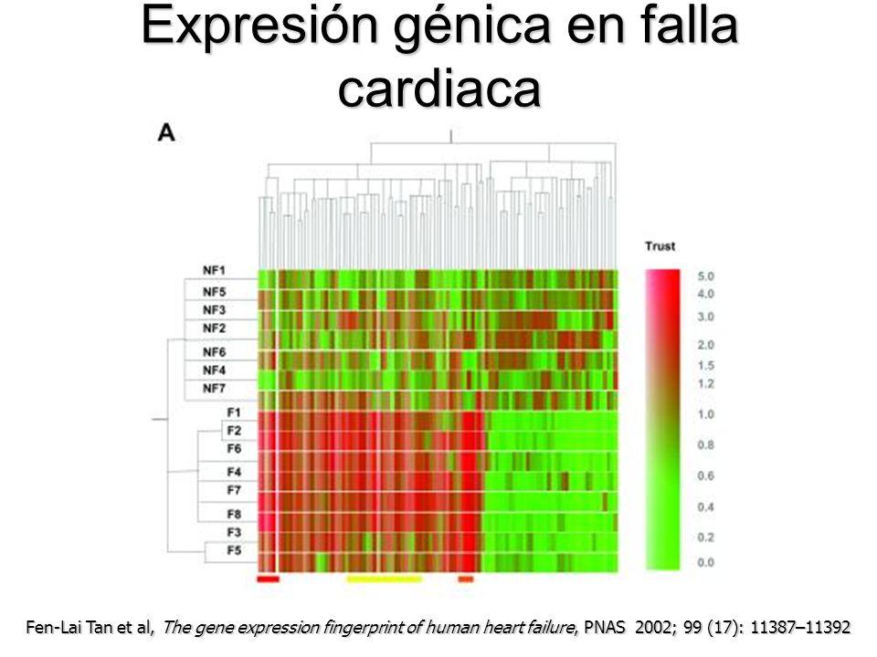 Expresión génica en falla cardiaca