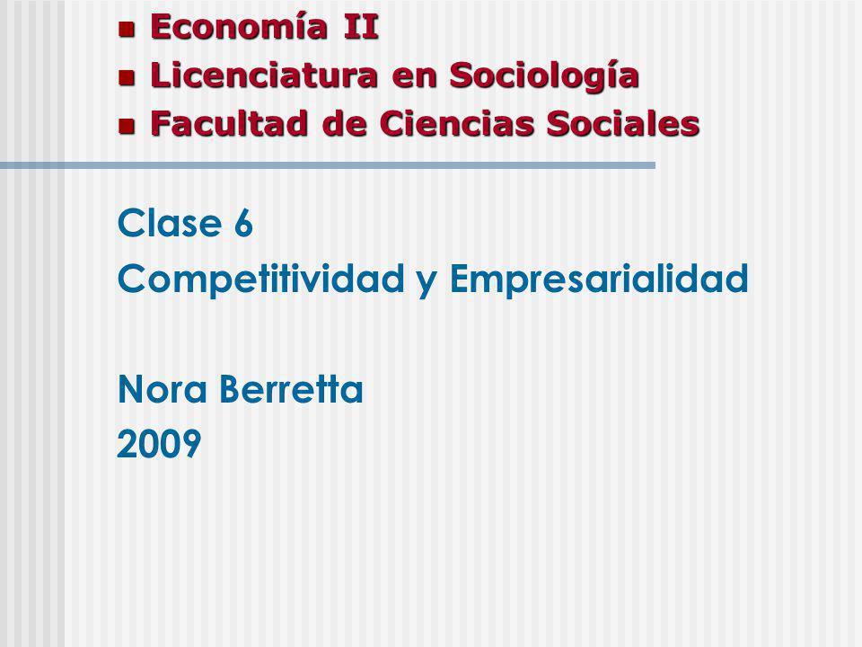 Competitividad y Empresarialidad Nora Berretta 2009