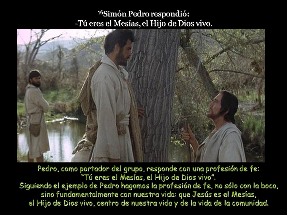 16Simón Pedro respondió: -Tú eres el Mesías, el Hijo de Dios vivo.