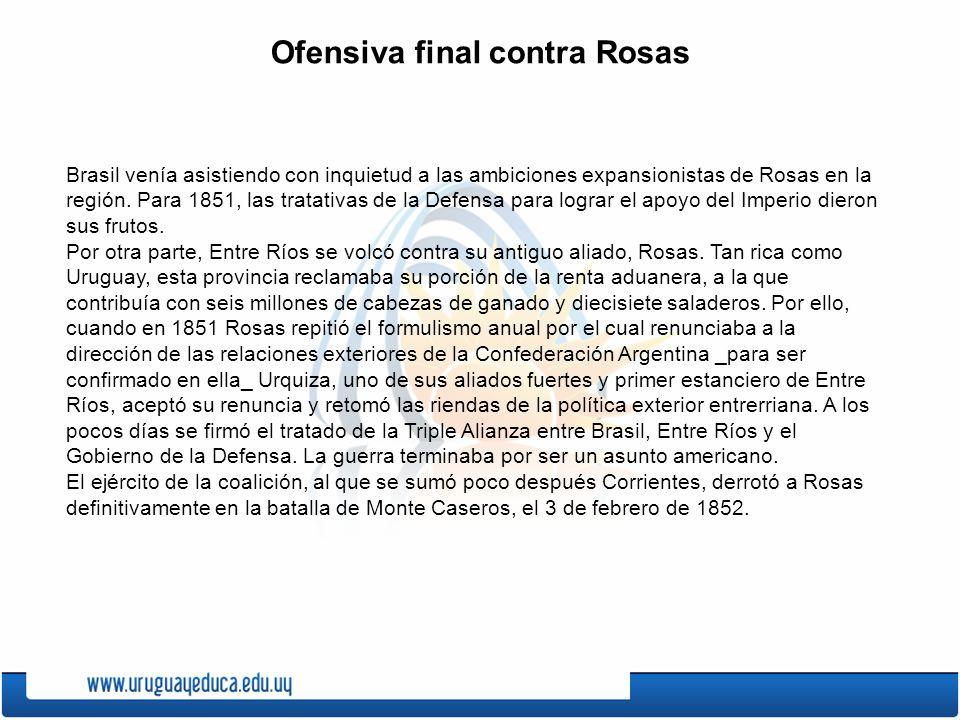Ofensiva final contra Rosas