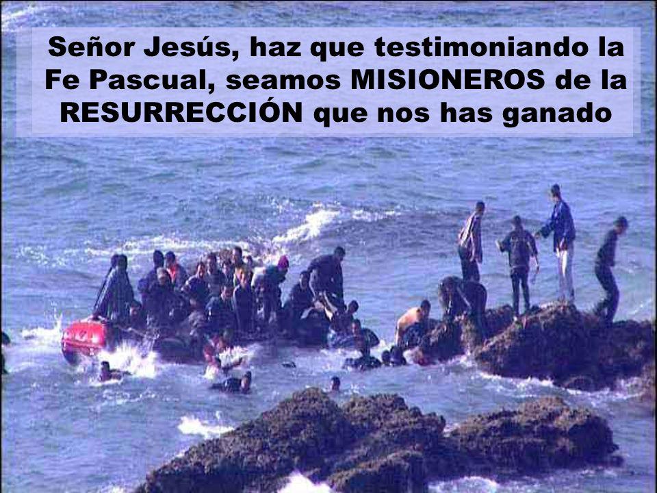 Señor Jesús, haz que testimoniando la Fe Pascual, seamos MISIONEROS de la RESURRECCIÓN que nos has ganado