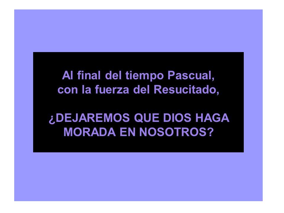 Al final del tiempo Pascual, con la fuerza del Resucitado,