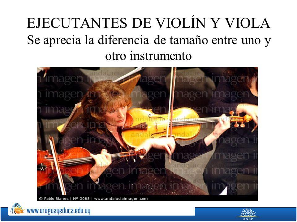 EJECUTANTES DE VIOLÍN Y VIOLA Se aprecia la diferencia de tamaño entre uno y otro instrumento