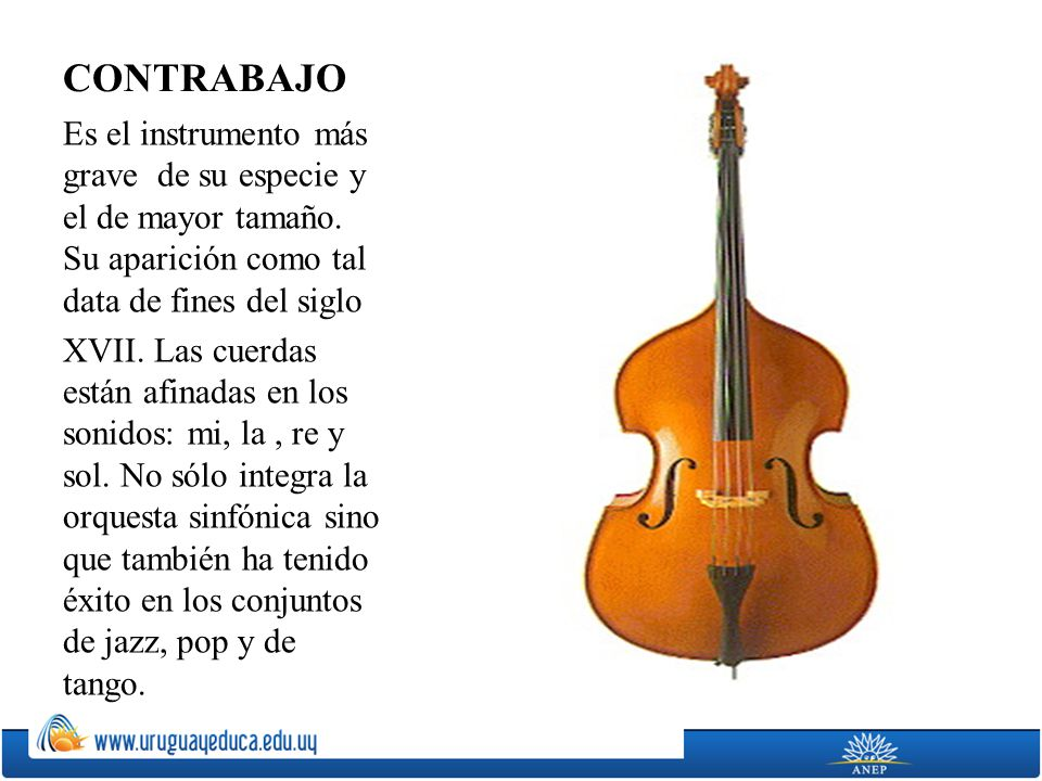 CONTRABAJO Es el instrumento más grave de su especie y el de mayor tamaño. Su aparición como tal data de fines del siglo.