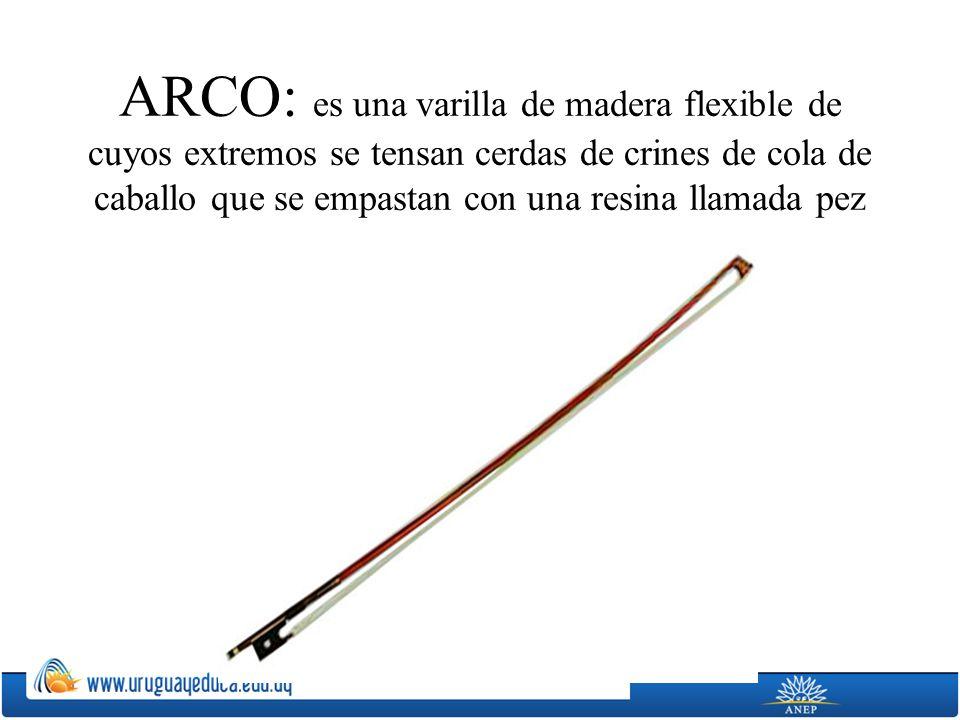 ARCO: es una varilla de madera flexible de cuyos extremos se tensan cerdas de crines de cola de caballo que se empastan con una resina llamada pez