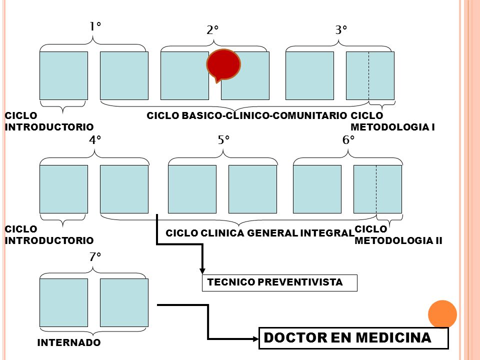 DOCTOR EN MEDICINA 1° 2° 3° 4° 5° 6° 7° CICLO INTRODUCTORIO