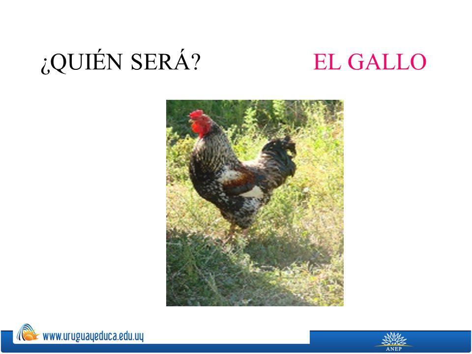 ¿QUIÉN SERÁ EL GALLO
