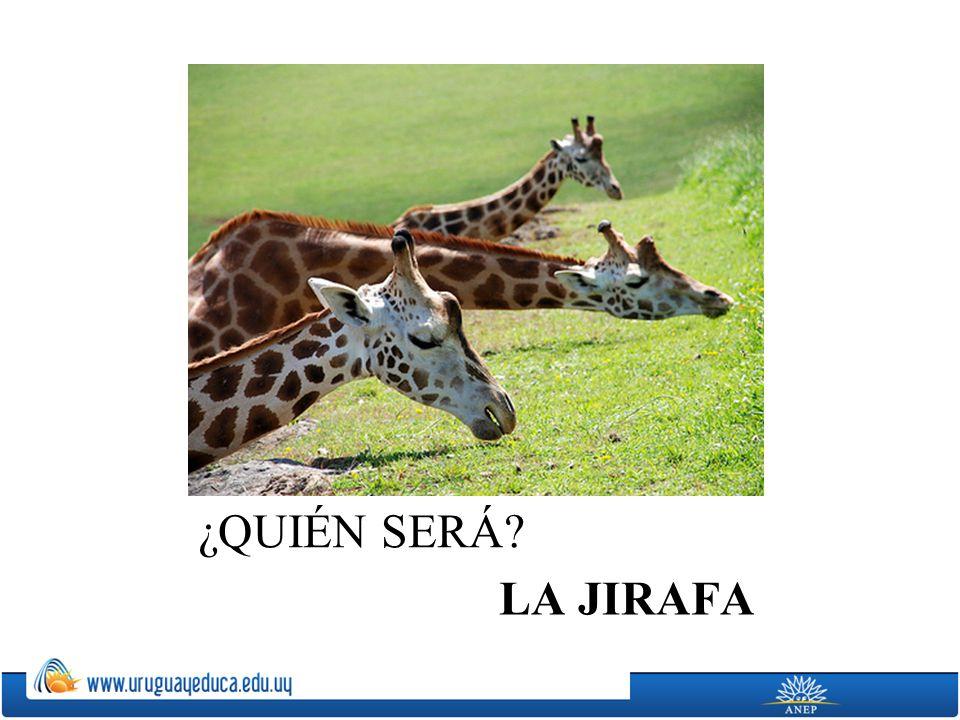 ¿QUIÉN SERÁ LA JIRAFA