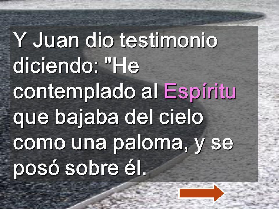Y Juan dio testimonio diciendo: He contemplado al Espíritu que bajaba del cielo como una paloma, y se posó sobre él.
