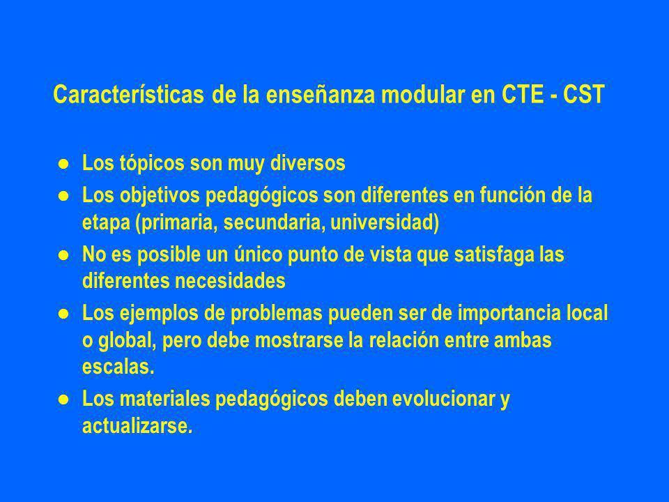 Características de la enseñanza modular en CTE - CST