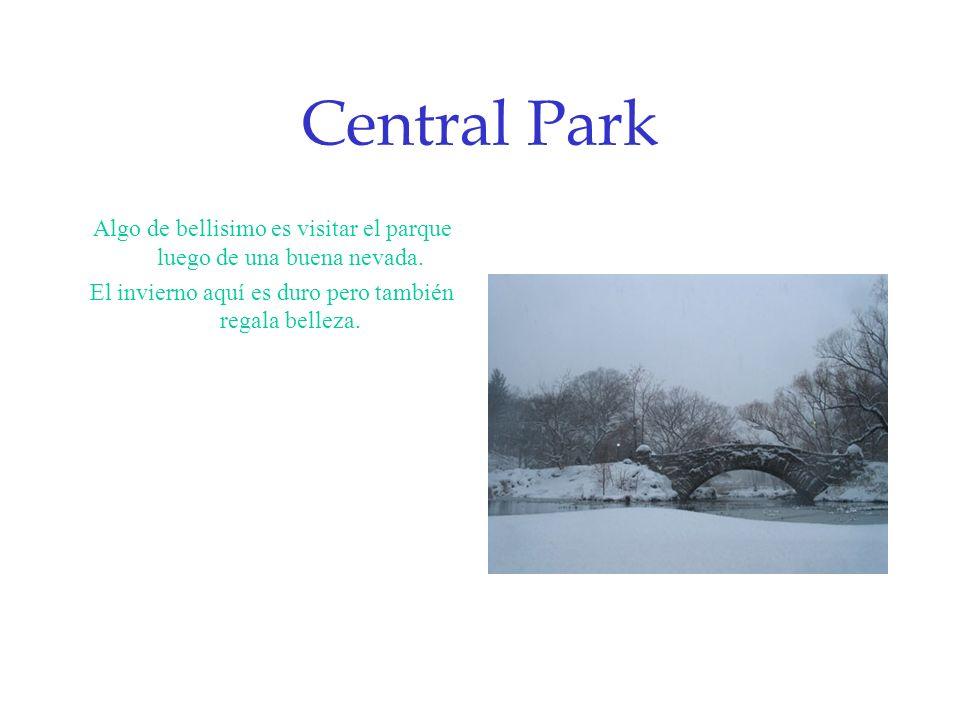 Central Park Algo de bellisimo es visitar el parque luego de una buena nevada.