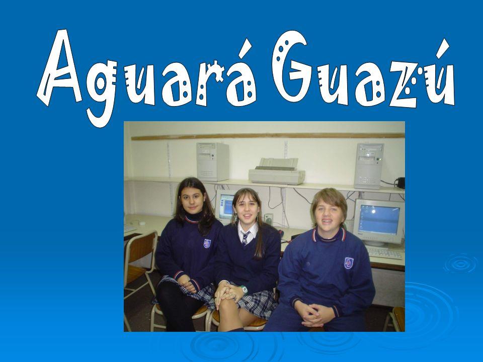 Aguará Guazú