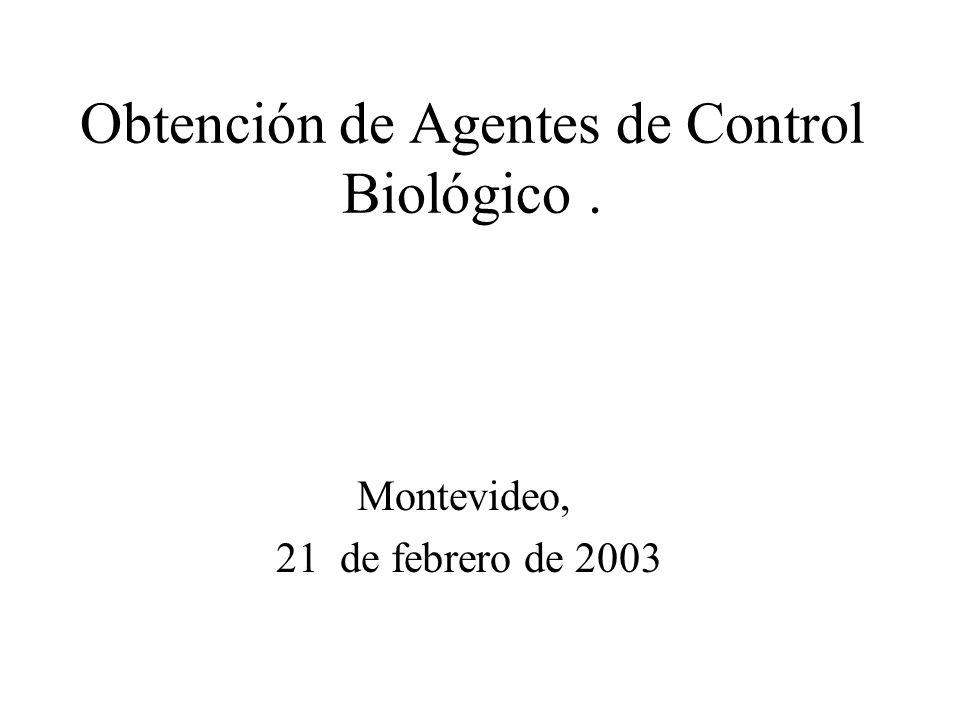 Obtención de Agentes de Control Biológico .