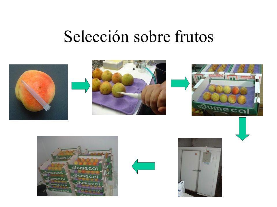 Selección sobre frutos