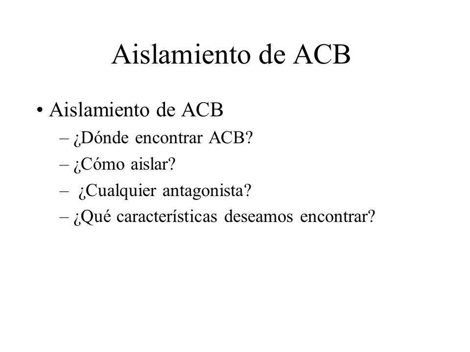 Aislamiento de ACB Aislamiento de ACB ¿Dónde encontrar ACB