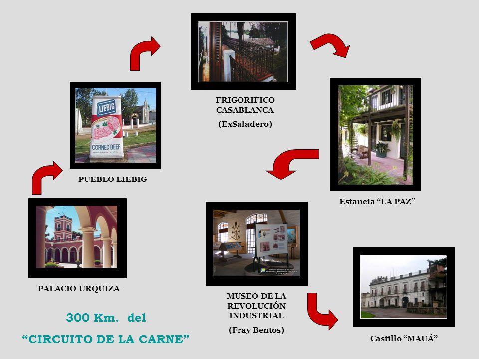 FRIGORIFICO CASABLANCA MUSEO DE LA REVOLUCIÓN INDUSTRIAL