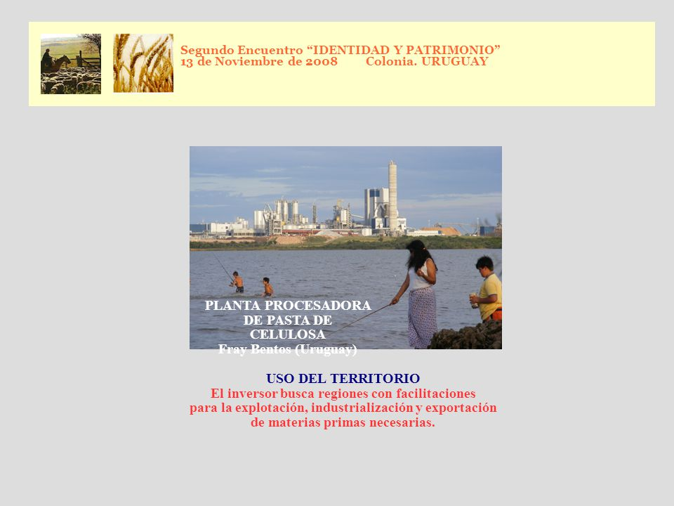 PLANTA PROCESADORA DE PASTA DE CELULOSA