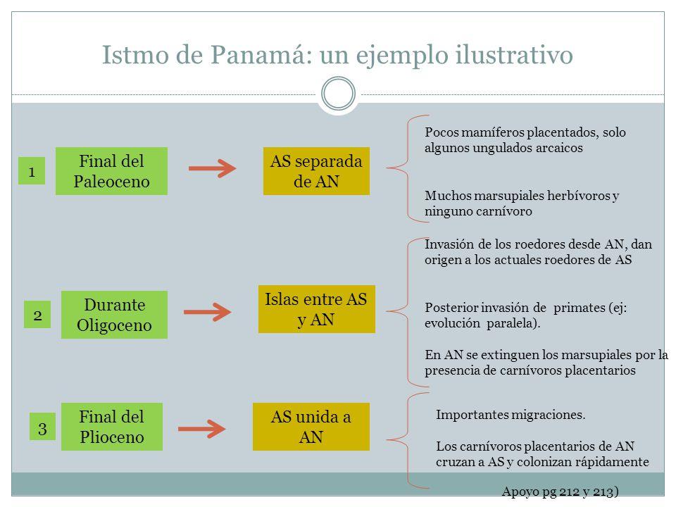 Istmo de Panamá: un ejemplo ilustrativo