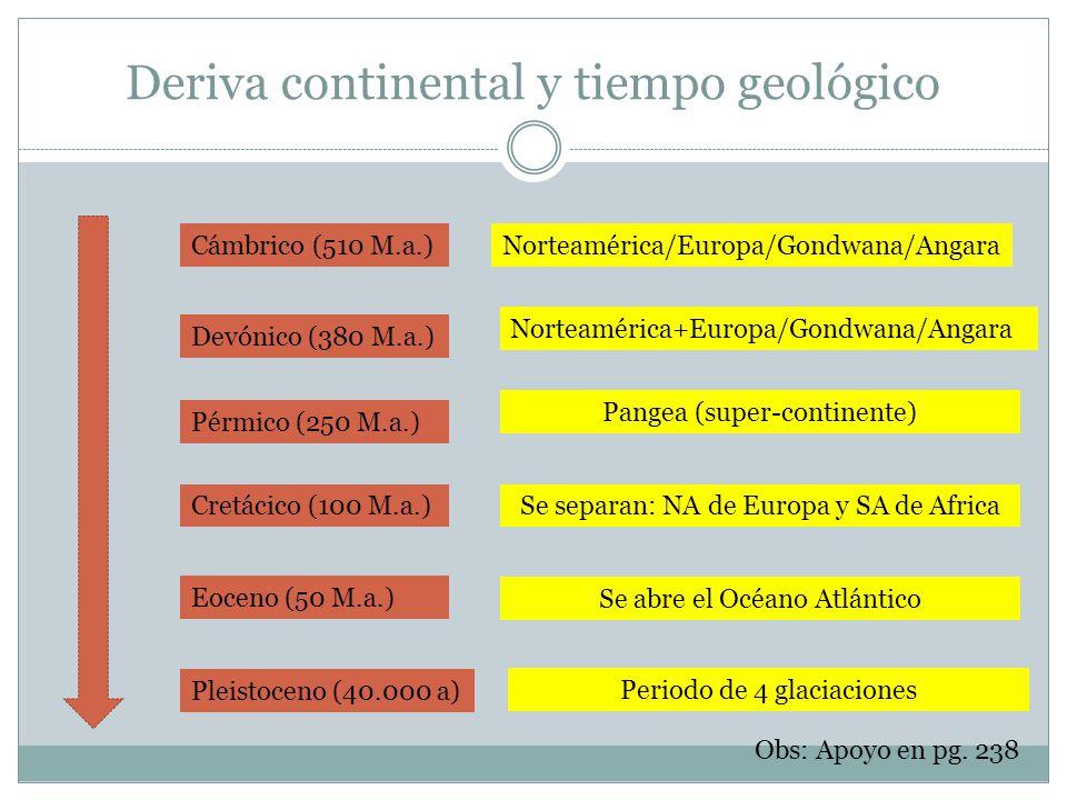 Deriva continental y tiempo geológico