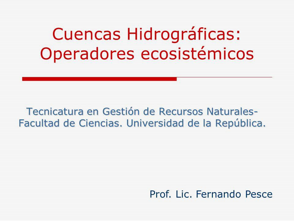 Cuencas Hidrográficas: Operadores ecosistémicos