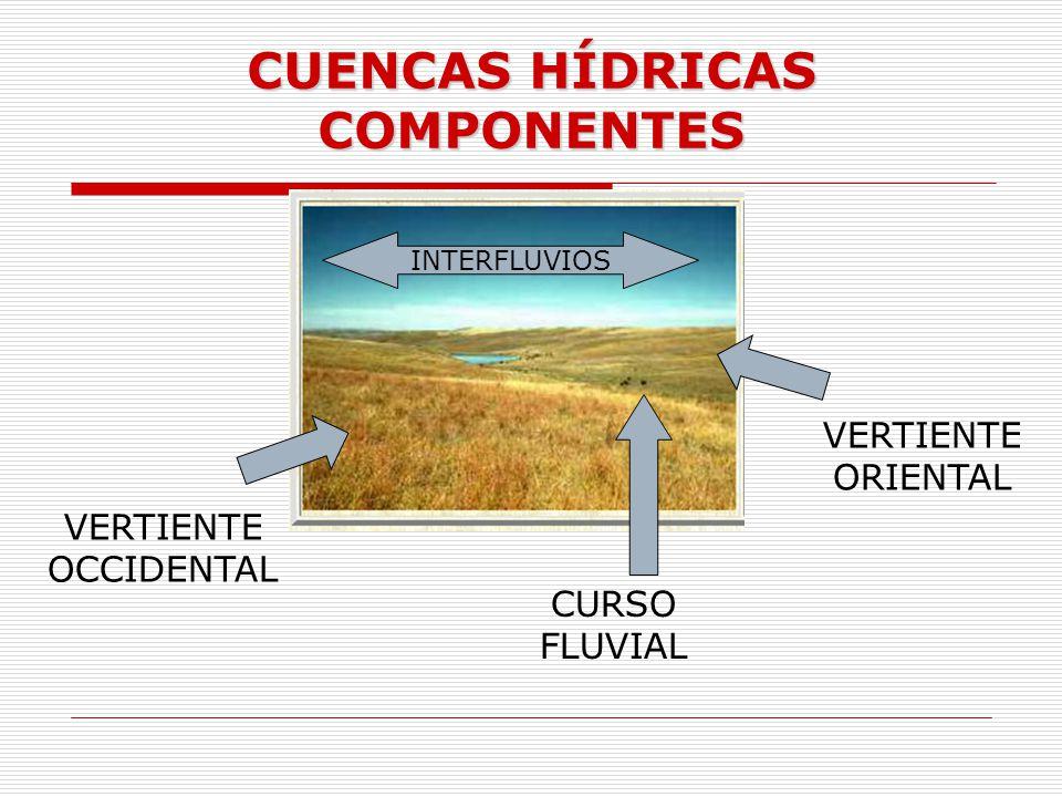 CUENCAS HÍDRICAS COMPONENTES