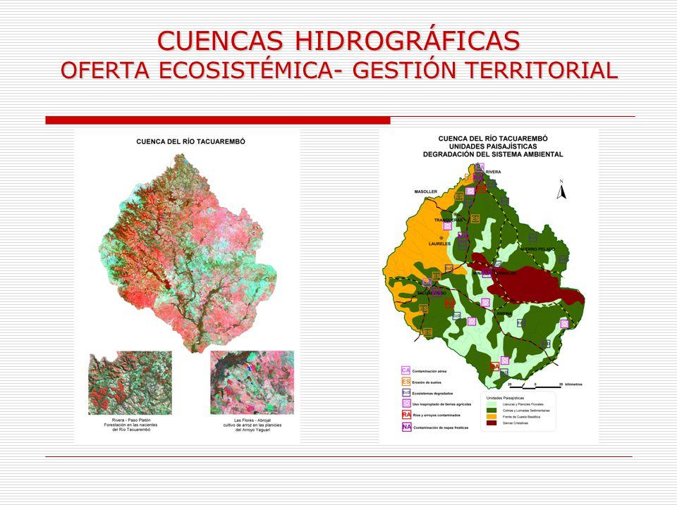 CUENCAS HIDROGRÁFICAS OFERTA ECOSISTÉMICA- GESTIÓN TERRITORIAL