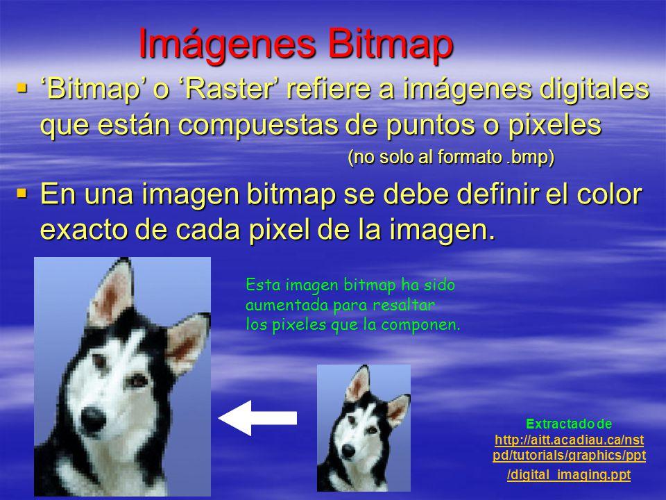 Imágenes Bitmap 'Bitmap' o 'Raster' refiere a imágenes digitales que están compuestas de puntos o pixeles.