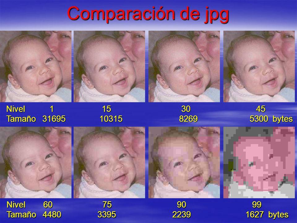 Comparación de jpg Nivel 1 15 30 45 Tamaño 31695 10315 8269 5300 bytes