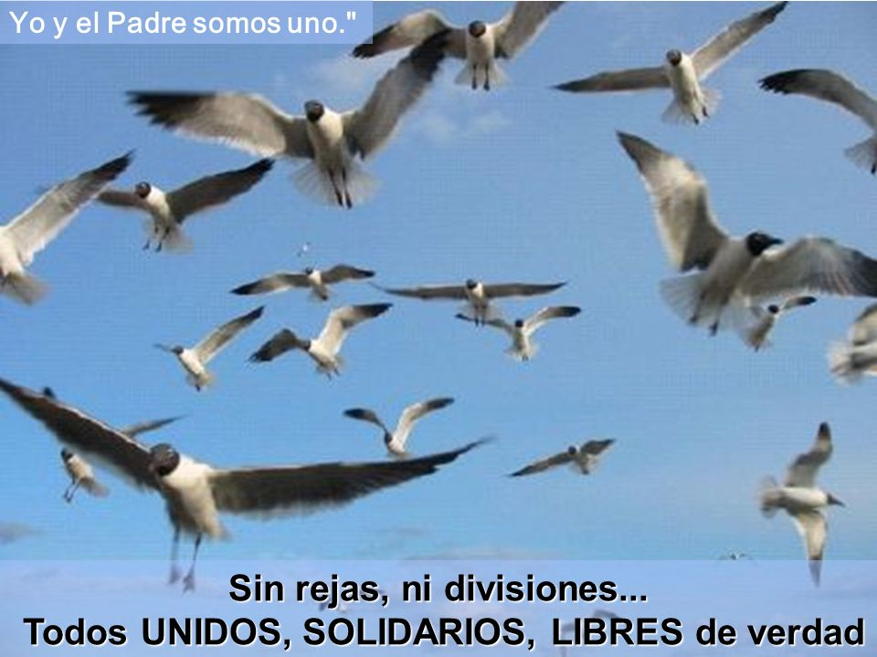 Sin rejas, ni divisiones... Todos UNIDOS, SOLIDARIOS, LIBRES de verdad