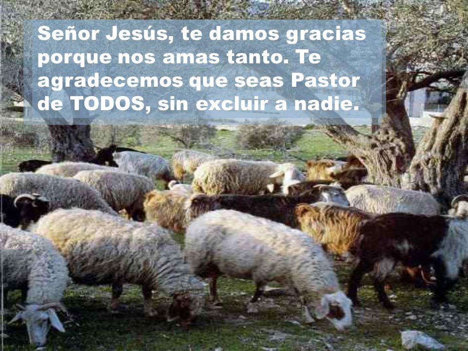 Señor Jesús, te damos gracias porque nos amas tanto