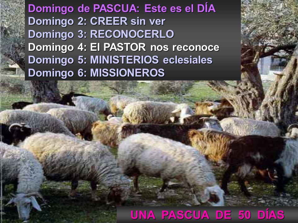 UNA PASCUA DE 50 DÍAS Domingo de PASCUA: Este es el DÍA