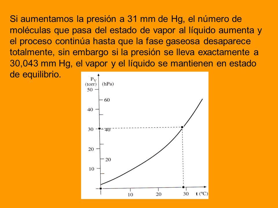 Si aumentamos la presión a 31 mm de Hg, el número de moléculas que pasa del estado de vapor al líquido aumenta y el proceso continúa hasta que la fase gaseosa desaparece totalmente, sin embargo si la presión se lleva exactamente a 30,043 mm Hg, el vapor y el líquido se mantienen en estado de equilibrio.