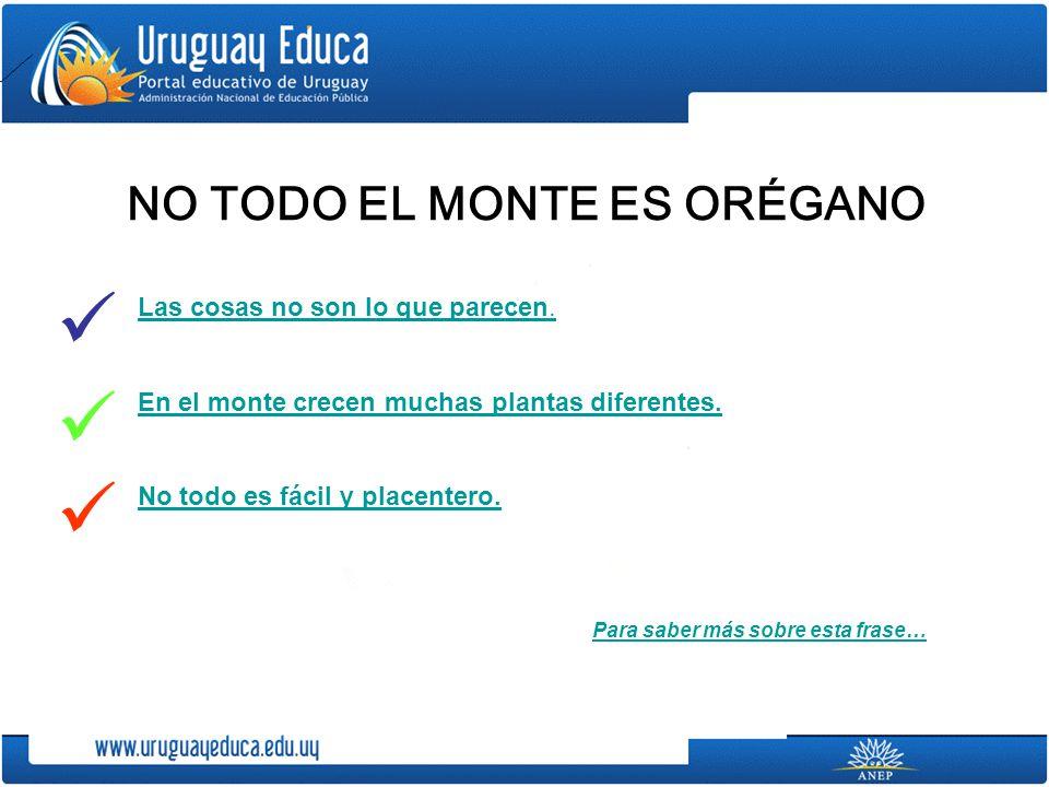 NO TODO EL MONTE ES ORÉGANO
