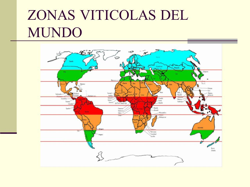 ZONAS VITICOLAS DEL MUNDO