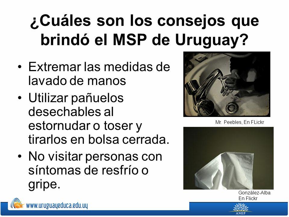 ¿Cuáles son los consejos que brindó el MSP de Uruguay