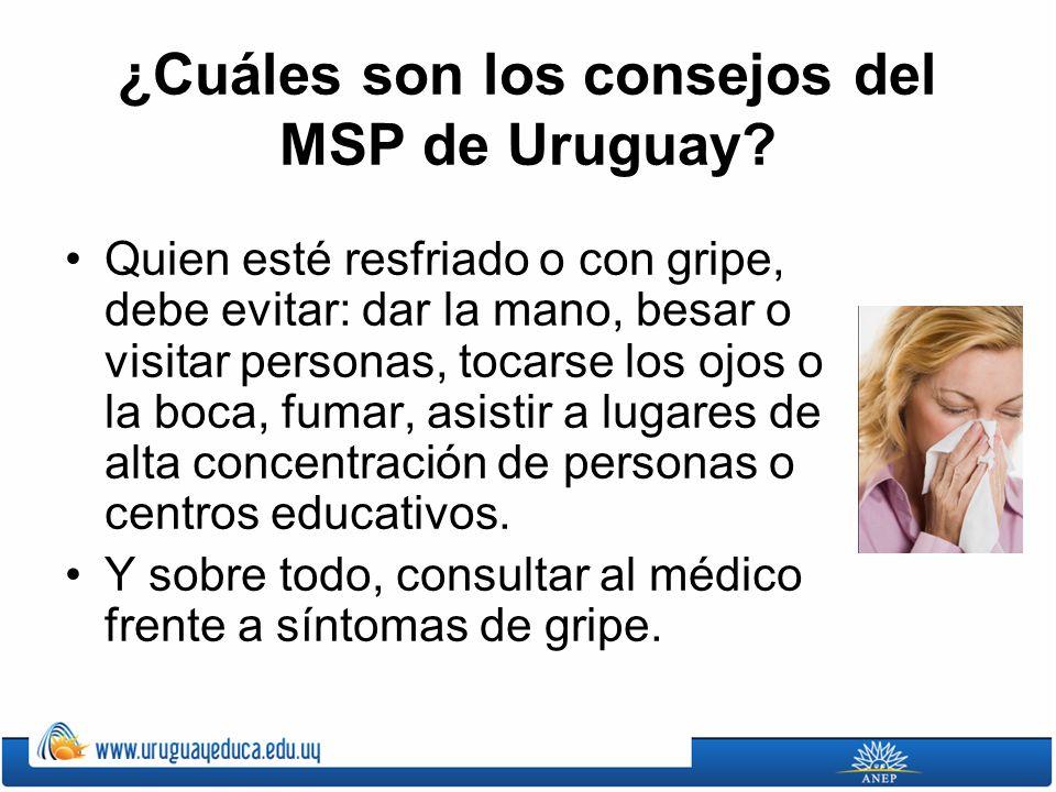 ¿Cuáles son los consejos del MSP de Uruguay