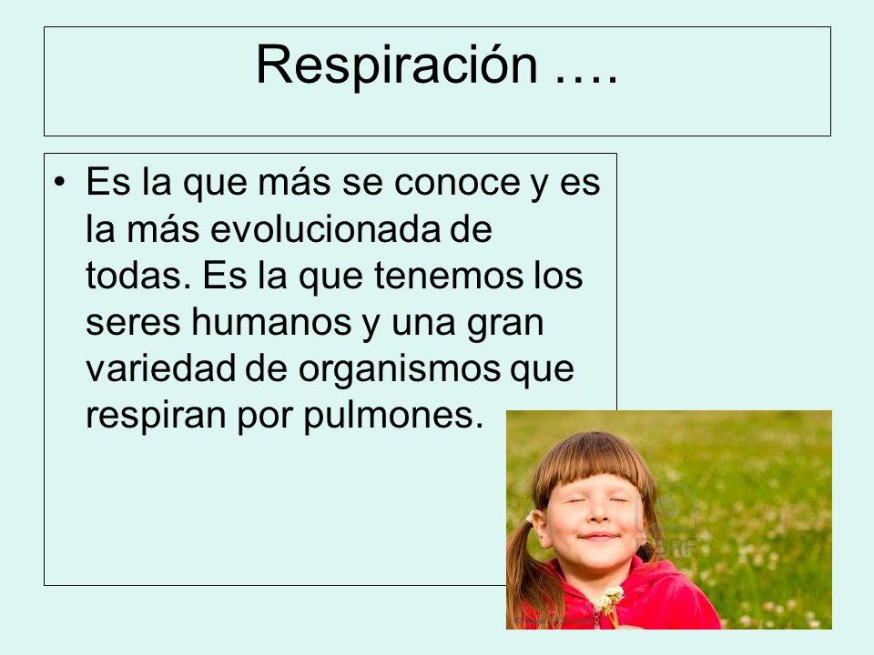 Respiración ….