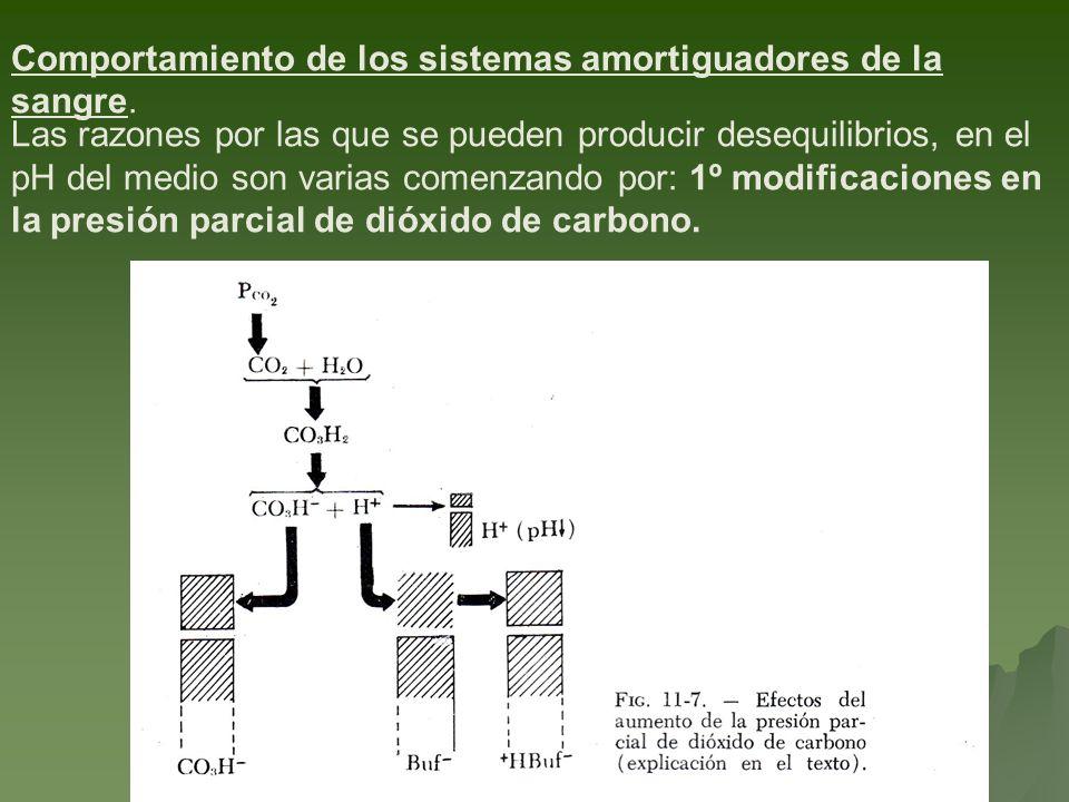 Comportamiento de los sistemas amortiguadores de la sangre.