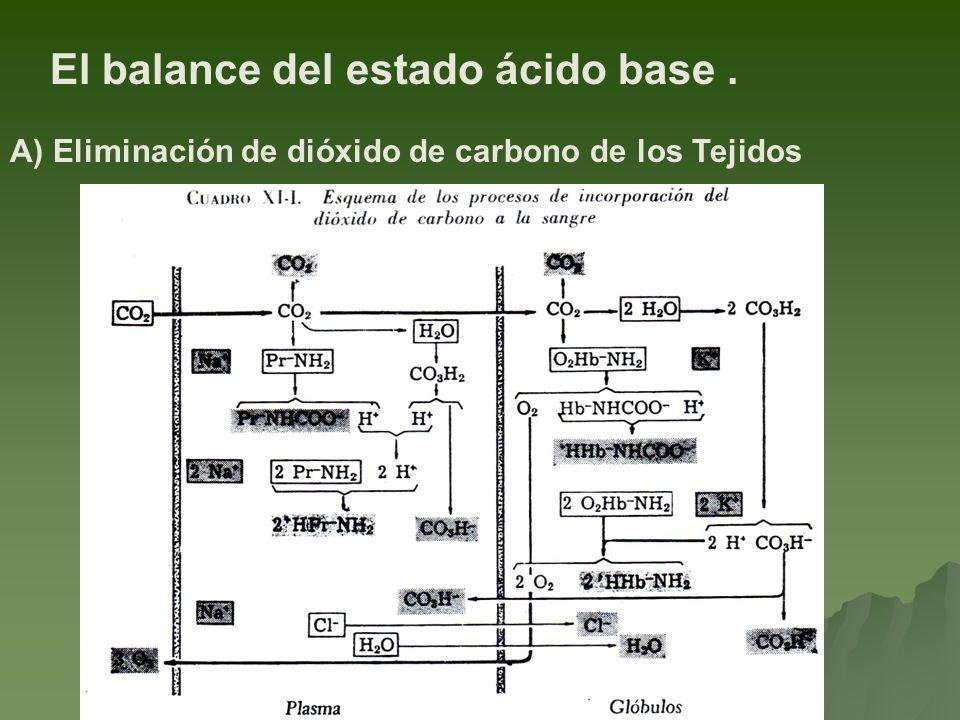 El balance del estado ácido base .
