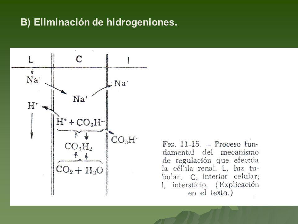 B) Eliminación de hidrogeniones.