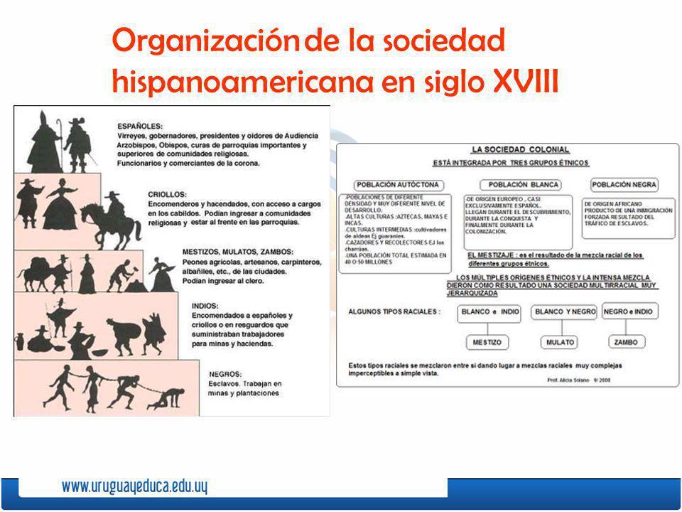 Organización de la sociedad hispanoamericana en siglo XVIII