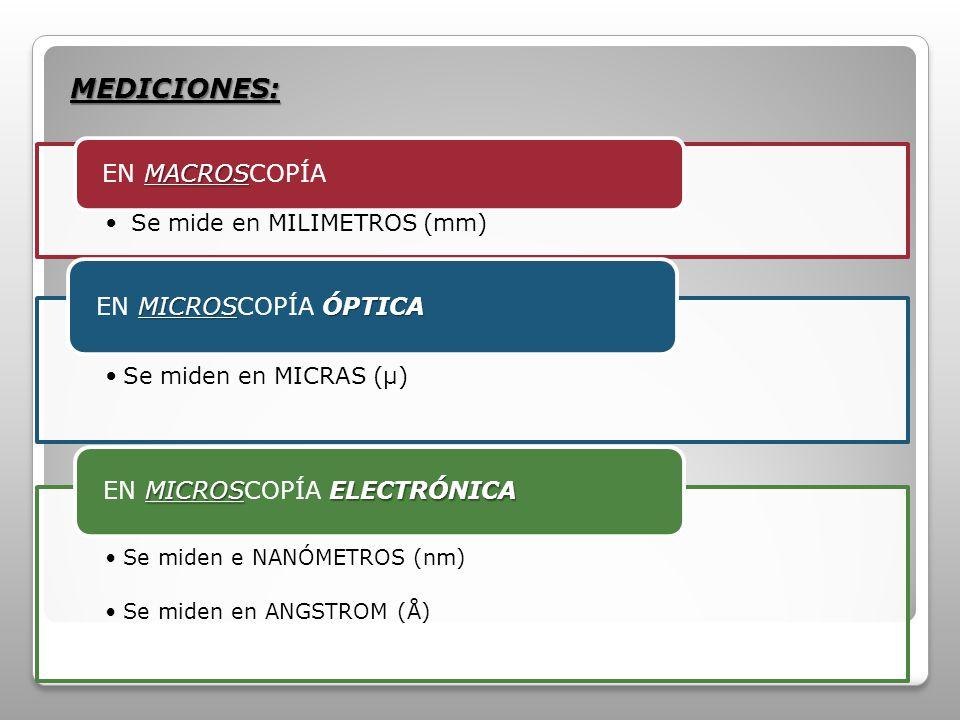 MEDICIONES: EN MICROSCOPÍA ELECTRÓNICA EN MICROSCOPÍA ÓPTICA