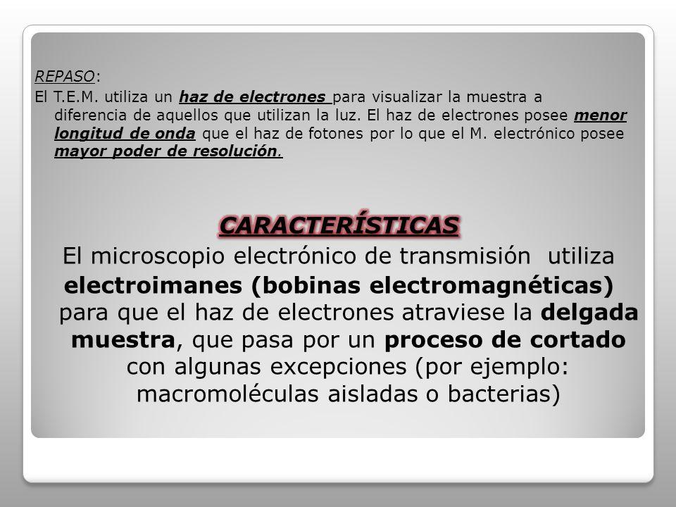 El microscopio electrónico de transmisión utiliza
