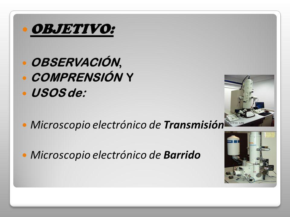OBJETIVO: Microscopio electrónico de Transmisión