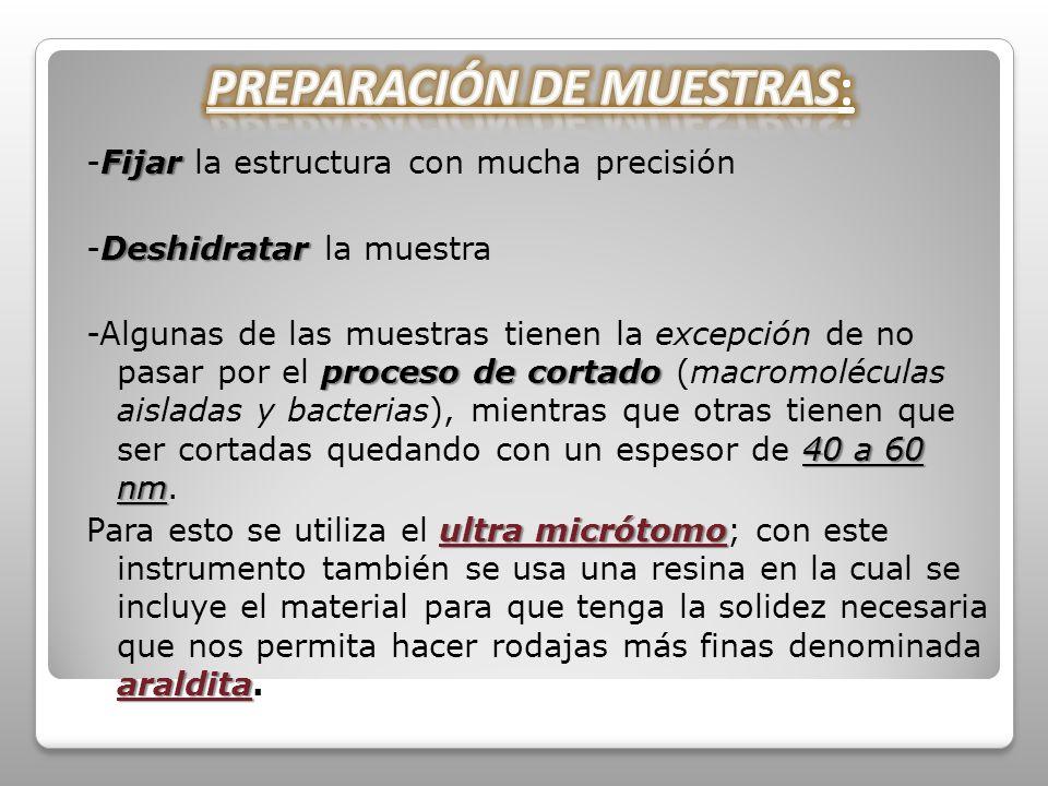 PREPARACIÓN DE MUESTRAS: