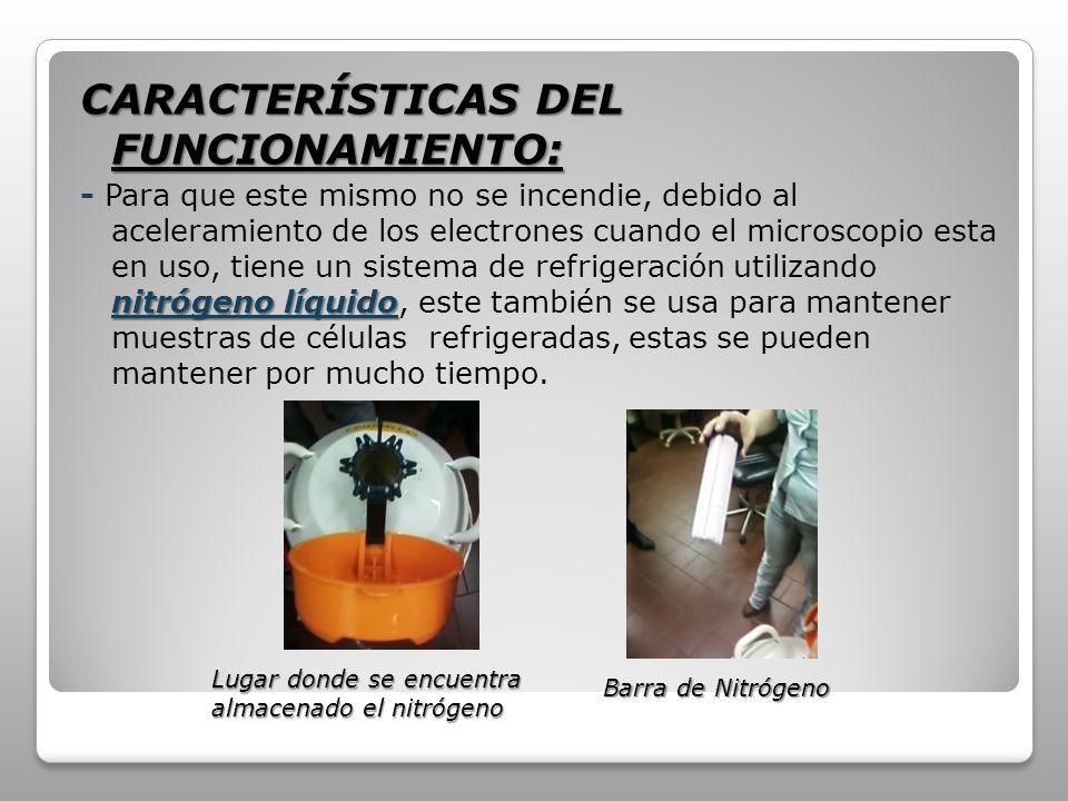 CARACTERÍSTICAS DEL FUNCIONAMIENTO:
