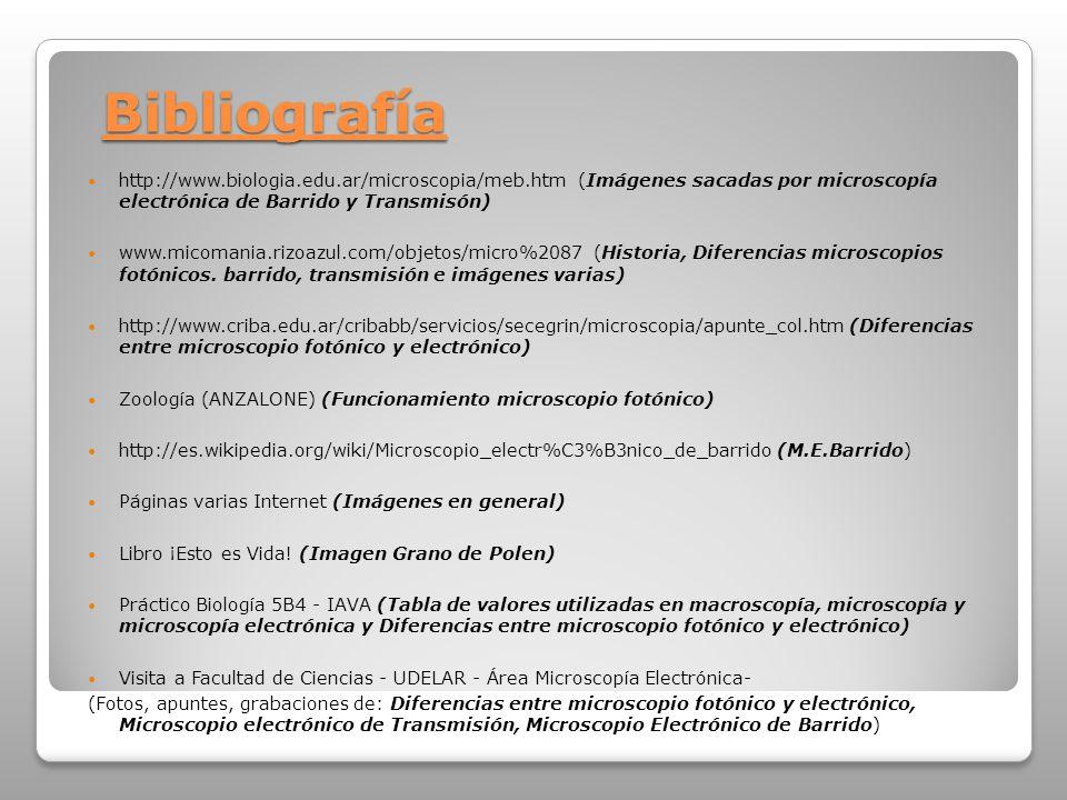 Bibliografía http://www.biologia.edu.ar/microscopia/meb.htm (Imágenes sacadas por microscopía electrónica de Barrido y Transmisón)