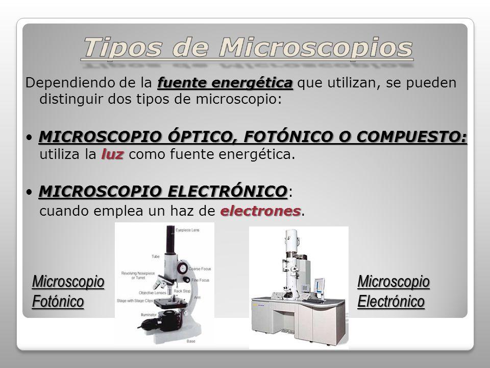 Tipos de Microscopios Microscopio Fotónico Microscopio Electrónico