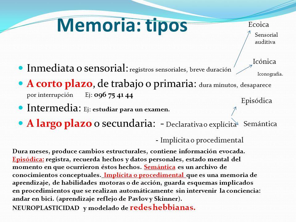 Memoria: tipos Ecoica. Sensorial auditiva. Icónica. Inmediata o sensorial: registros sensoriales, breve duración.